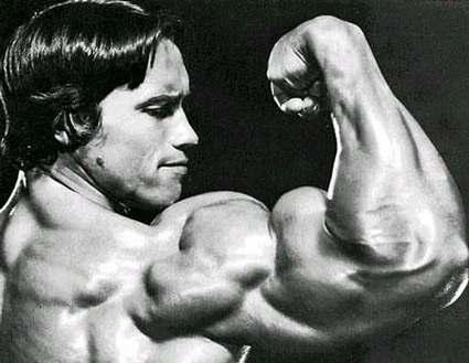 Arnold Schwarzenegger guns